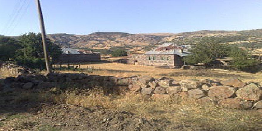 Karakoçan Dumluyazı Köyü Resimleri