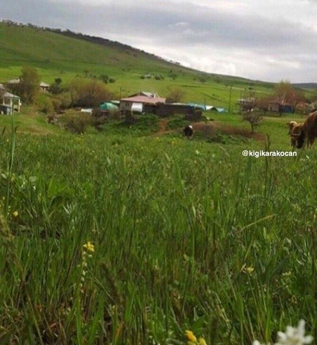 Karakoçan Durmuşköy Köyü Resimleri 1