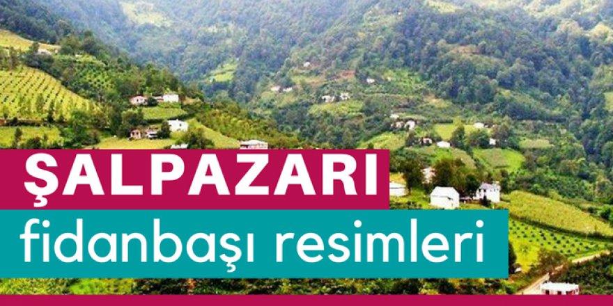 Şalpazarı Fidanbaşı Köyü Resimleri