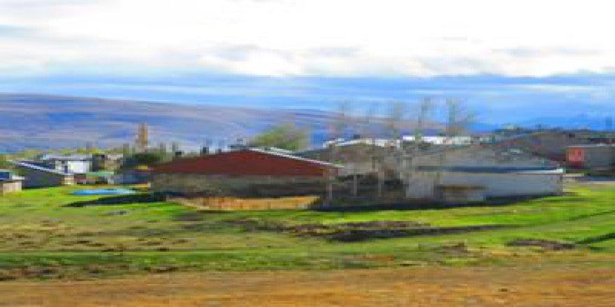 Aydıntepe Akbulut Köyü Resimleri