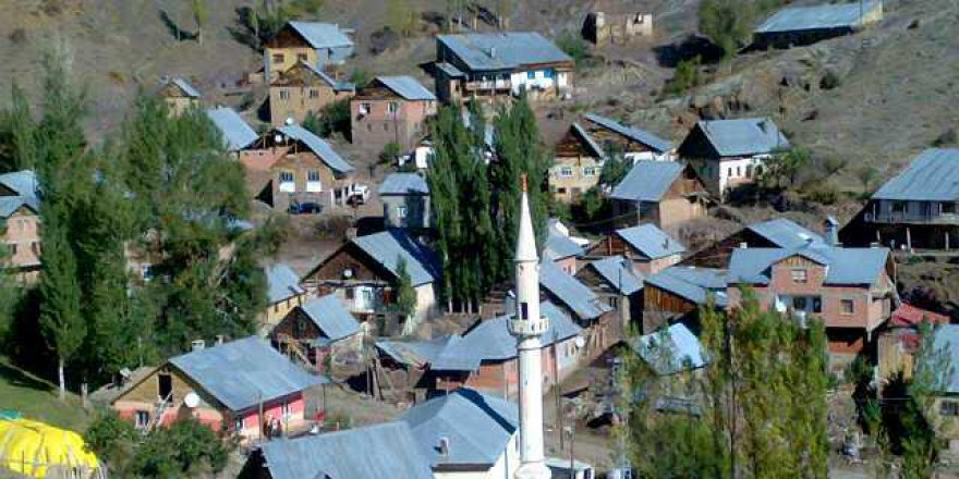 Aydıntepe Alaca Köyü Resimleri