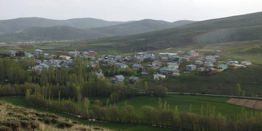 Aydıntepe Çiğdemlik Köyü Resimleri