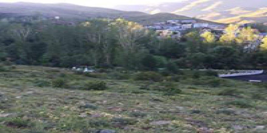 Aydıntepe Pınargözü Köyü Resimleri