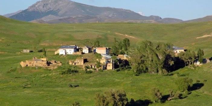 Aydıntepe Yapracık Köyü Resimleri