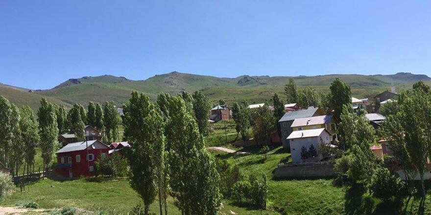 Aydıntepe Yazlık Köyü Resimleri