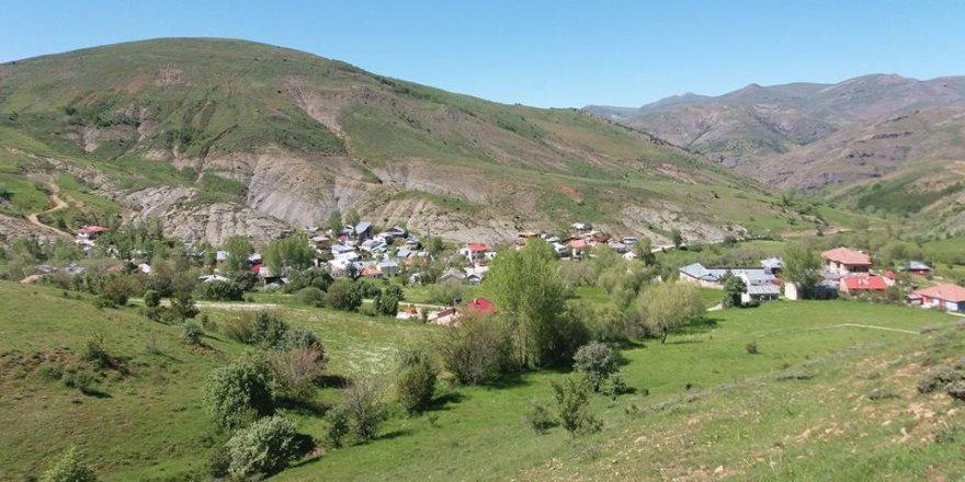 Demirözü Çatalçeşme Köyü Resimleri