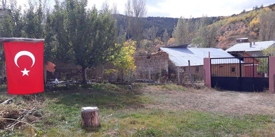Demirözü Petekli Köyü Resimleri