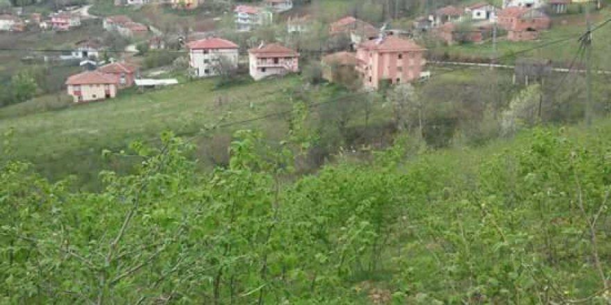 Ayvacık Yeniköy Köyü Resimleri