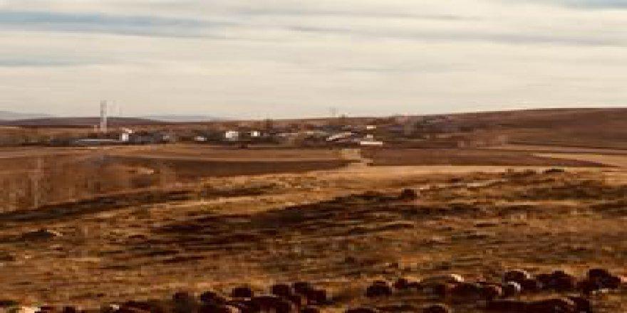Bayburt Taşocağı Köyü Resimleri