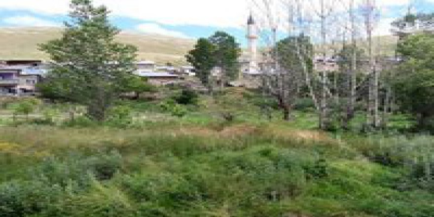 Bayburt Tepetarla Köyü Resimleri
