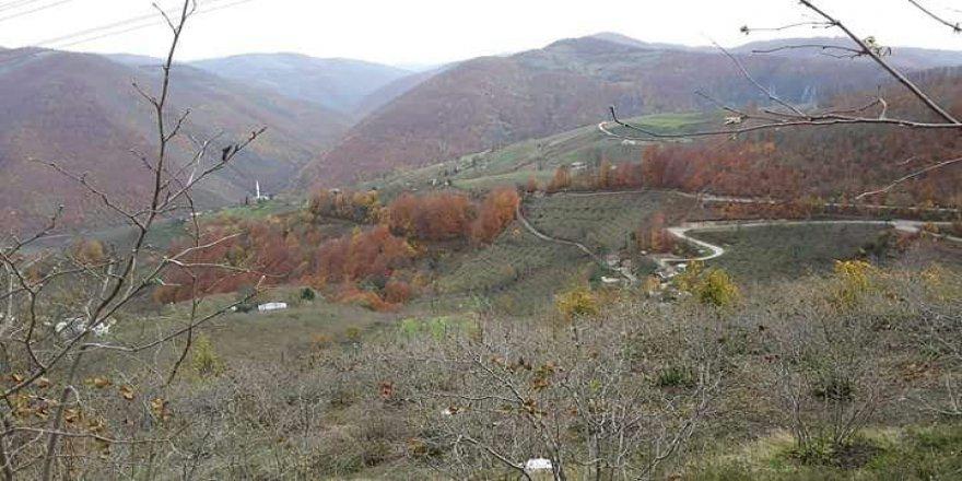 İlkadım Çelikalan Köyü Resimleri