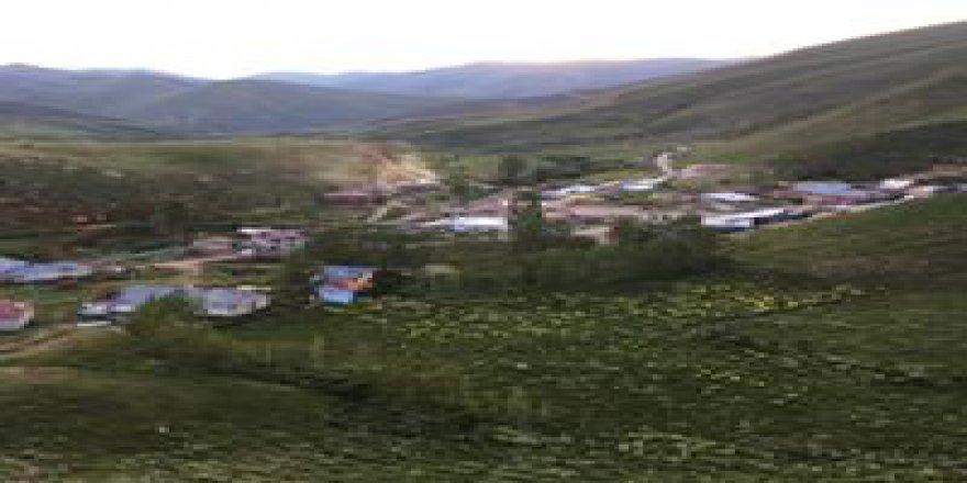 Bayburt Yeniköy Köyü Resimleri
