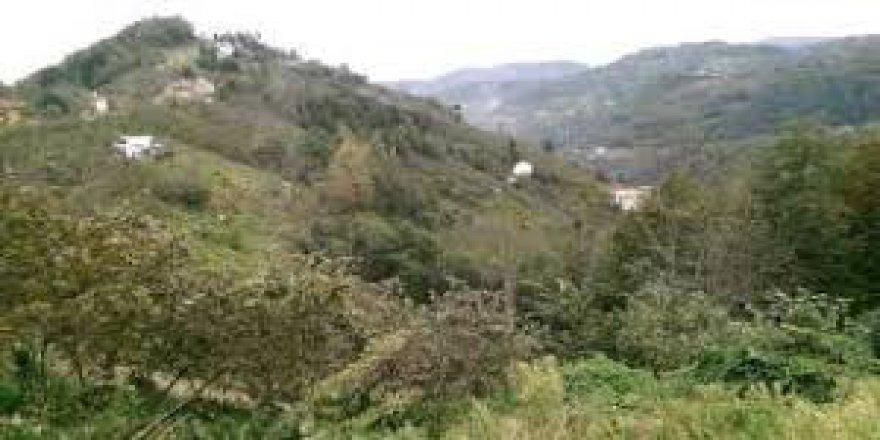 Vakfıkebir Fethiye Köyü Resimleri
