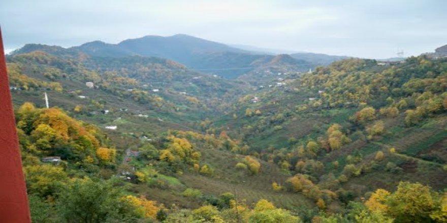 Vakfıkebir Mahmutlu Köyü Resimleri