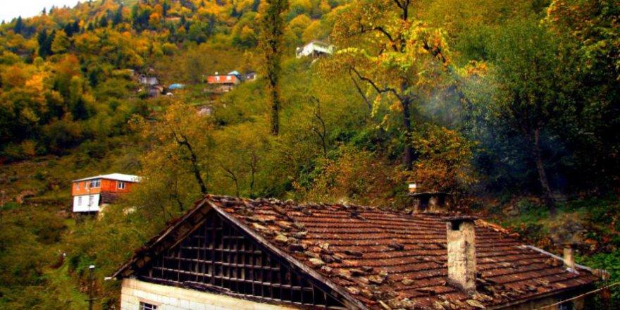Yomra Çamlıyurt Köyü Resimleri