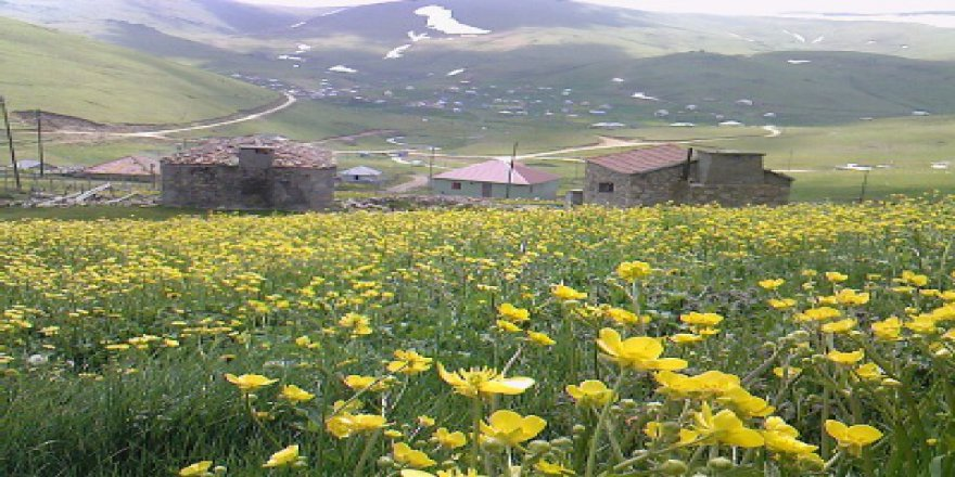Yomra Gülyurdu Köyü Resimleri