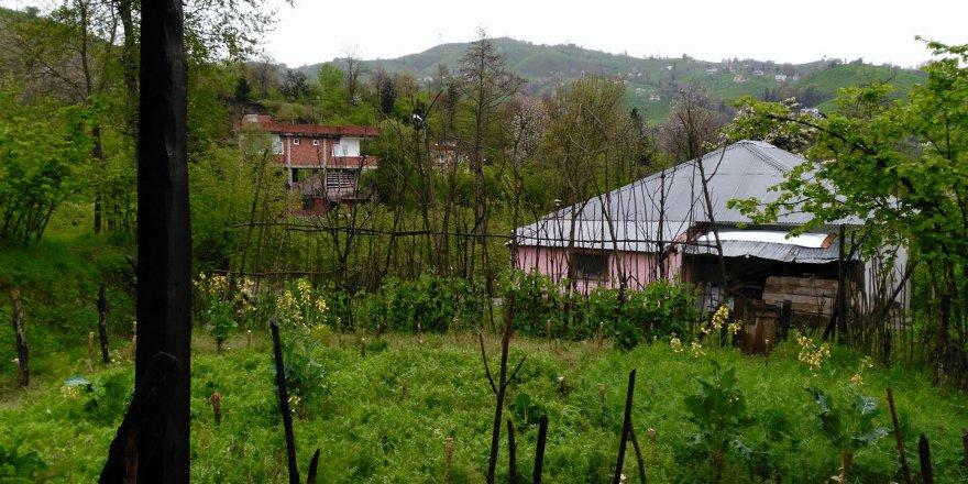 Yomra Yokuşlu Köyü Resimleri