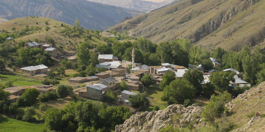 Divriği Arıkbaşı Köyü Resimleri