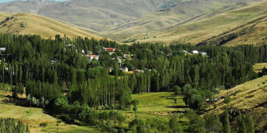 Divriği Bahtiyar Köyü Resimleri