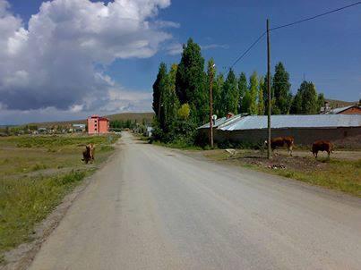 Altınyayla Serinyayla Köyü Resimleri 1