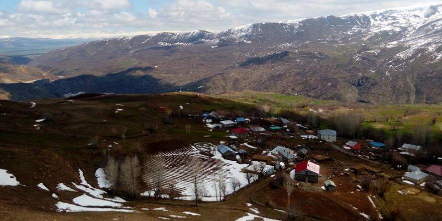 Muş Ulukaya Köyü Resimleri