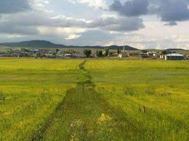 Altınyayla Taşlıhüyük Köyü Resimleri 1