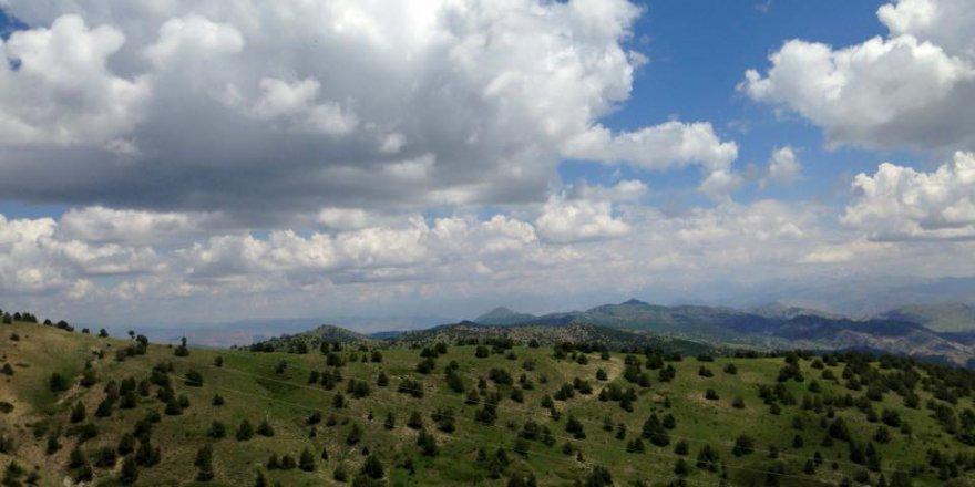 Divriği Çitme Köyü Resimleri