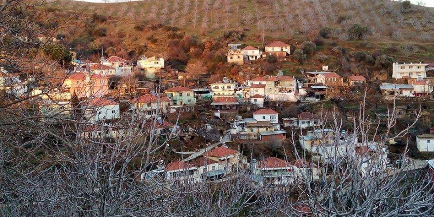 İncirliova Palamut Köyü Resimleri