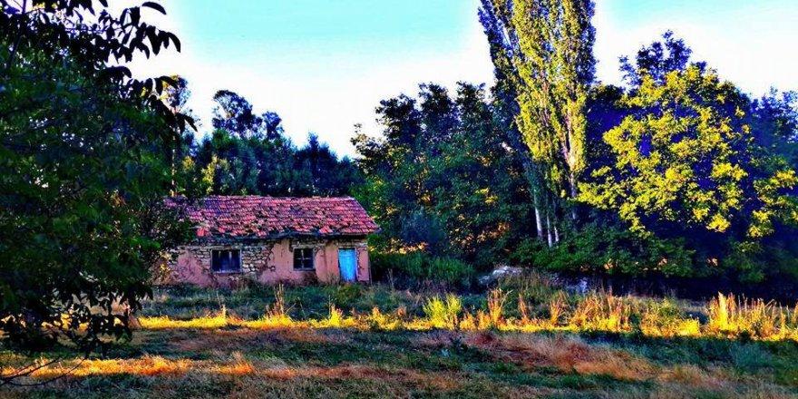 Divriği Yazı Köyü Resimleri