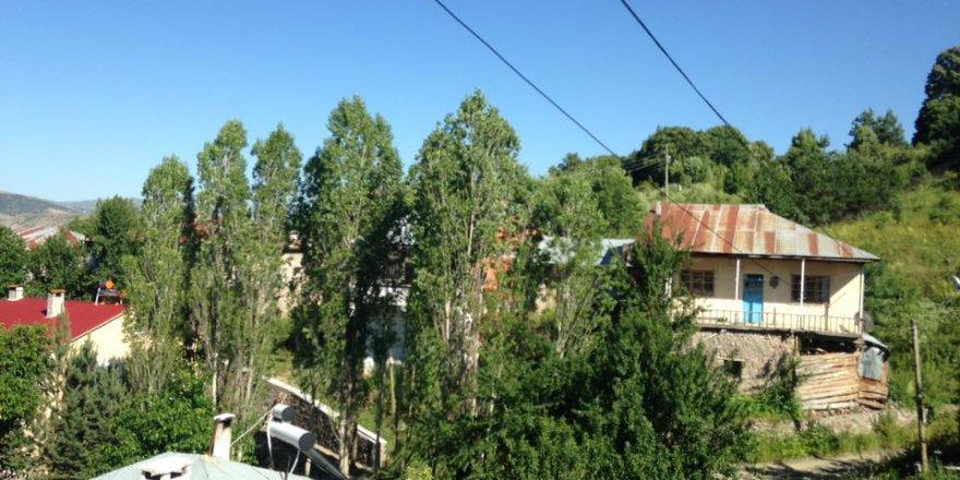 Doğanşar Boyalı Köyü Resimleri