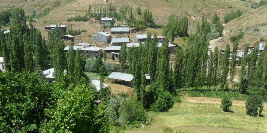 Doğanşar İçdere Köyü Resimleri
