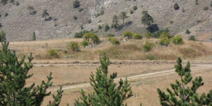 Doğanşar Kabaçam Köyü Resimleri