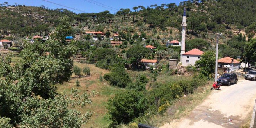 Kavaklıdere Çamlıyurt Köyü Resimleri