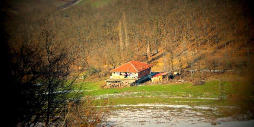 Gökçebey Aktarla Köyü Resimleri