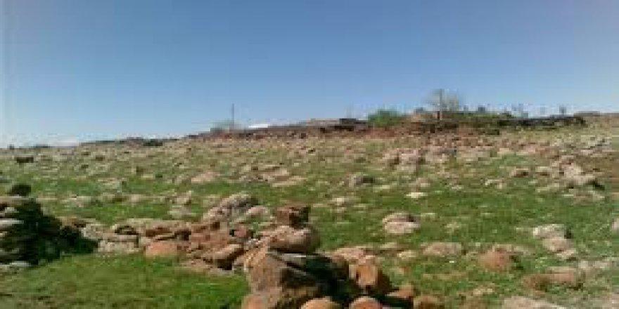 Çınar Yeşiltaş Köyü Resimleri