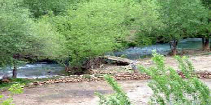 Çınar Yukarımollaali Köyü Resimleri