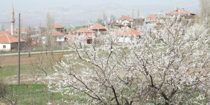 Gemerek Tatlıpınar Köyü Resimleri