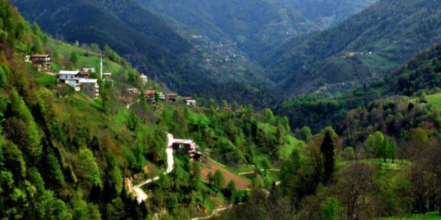İkizdere Rüzgarlı Köyü Resimleri