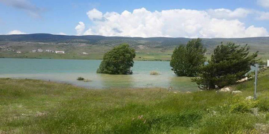 Gölova Aydoğdu Köyü Resimleri