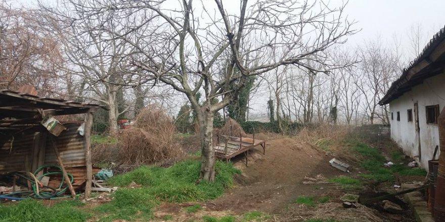 Arifiye Adliye Köyü Resimleri