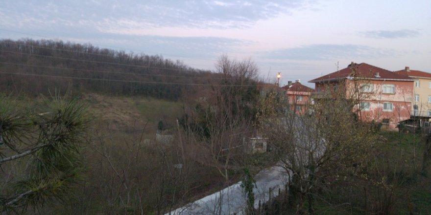 Alaplı Alioğlu Köyü Resimleri