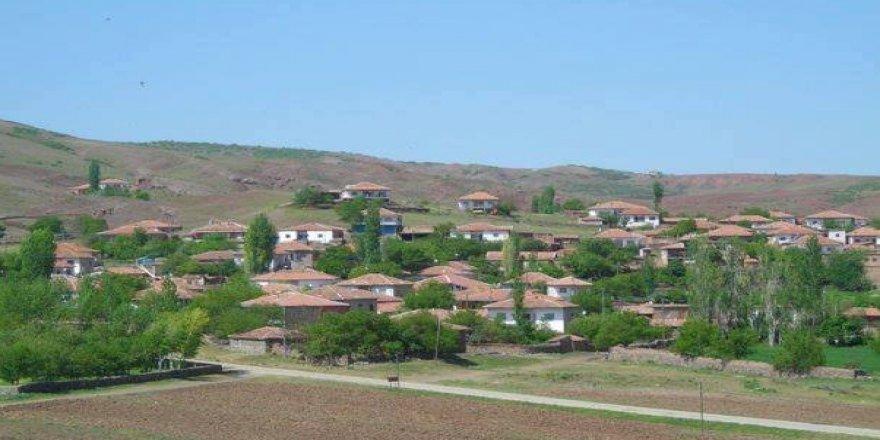 Çiçekdağı Kaleevci Köyü Resimleri