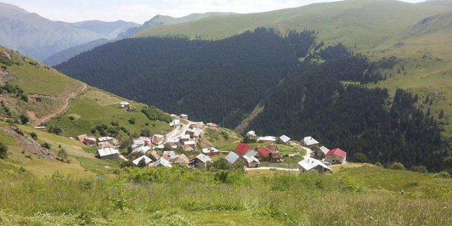 Gümüşhane Akocak Köyü resimleri