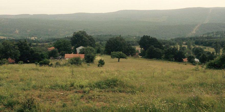 Armutlu Selimiye Köyü Resimleri