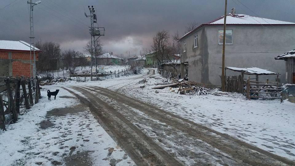 Alaçam Kapaklı Köyü Resimleri 1