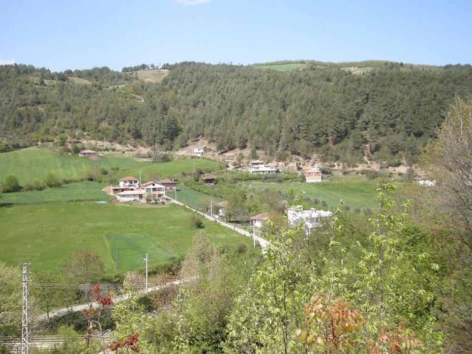Alaçam Killik Köyü Resimleri 1