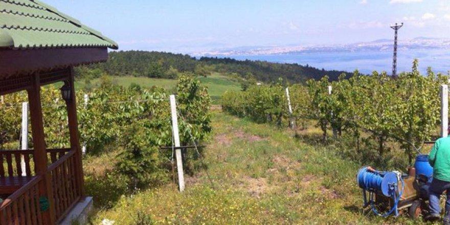 Çiftlikköy Kabaklı Köyü Resimleri