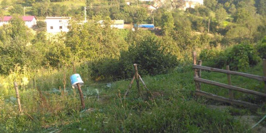 Alaçam Şirinköy Köyü Resimleri