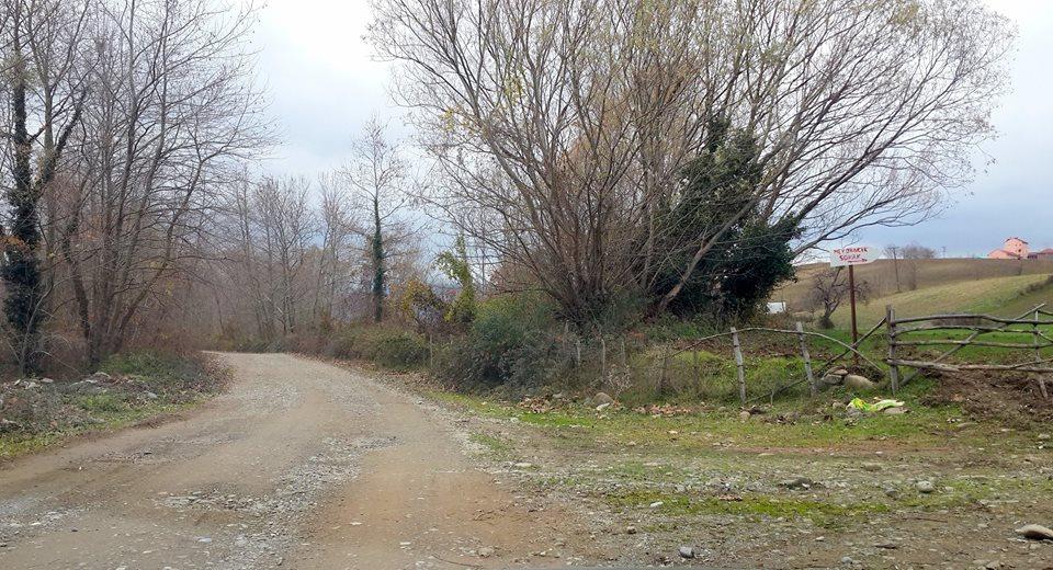 Alaçam Taşkelik Köyü Resimleri 1