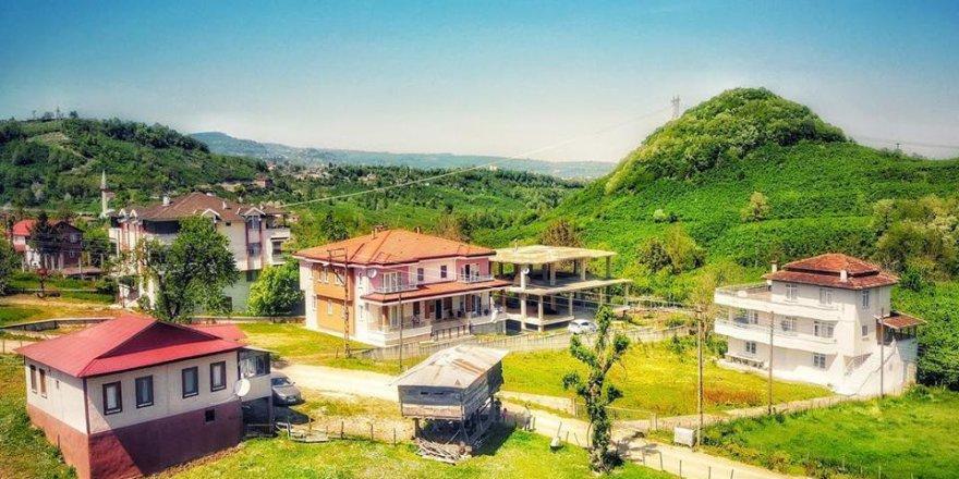 Altınordu Düzköy Köyü Resimleri